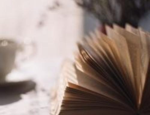 La bibliothèque de Kidae – Chronique